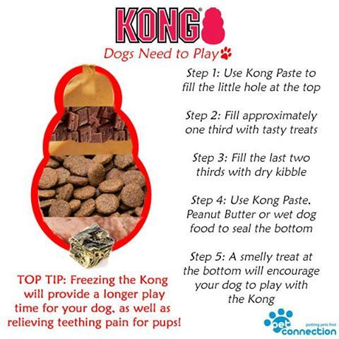 Kong Toys For Your Dog Petconnection Ie Dog Pup Toy Kong