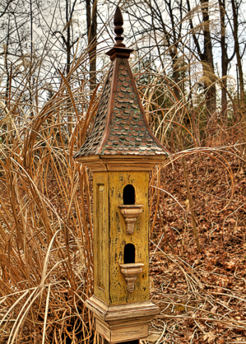 Regal Roosts Gallery ~ $1899 ... Seriously??? ... let the birds in the house ... would be cheaper :/
