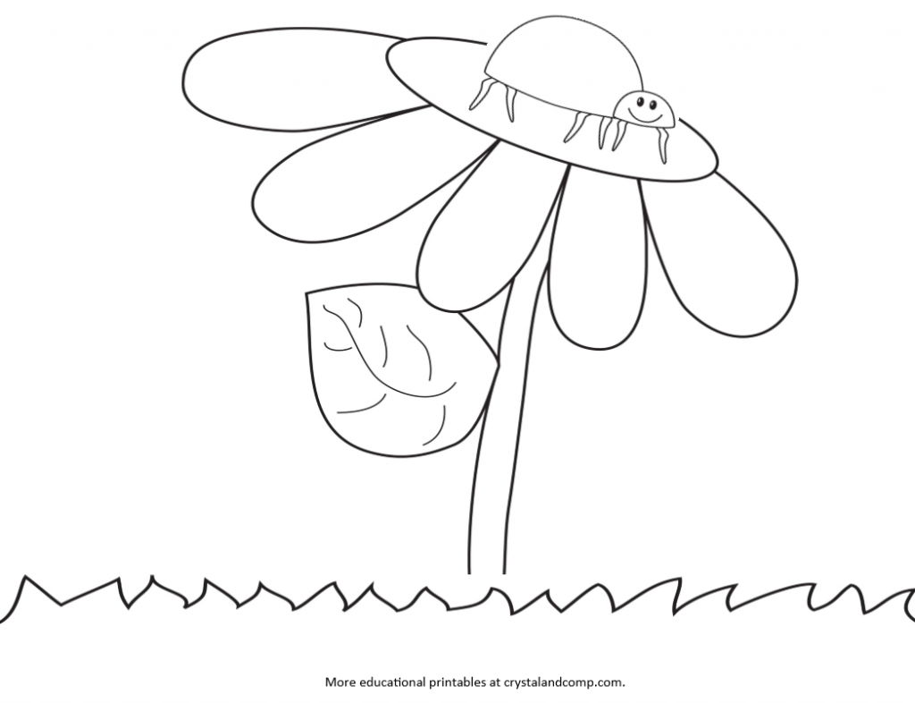 Coloring pages of ladybugs for kids - Kid Color Pages Ladybug Life Cycle