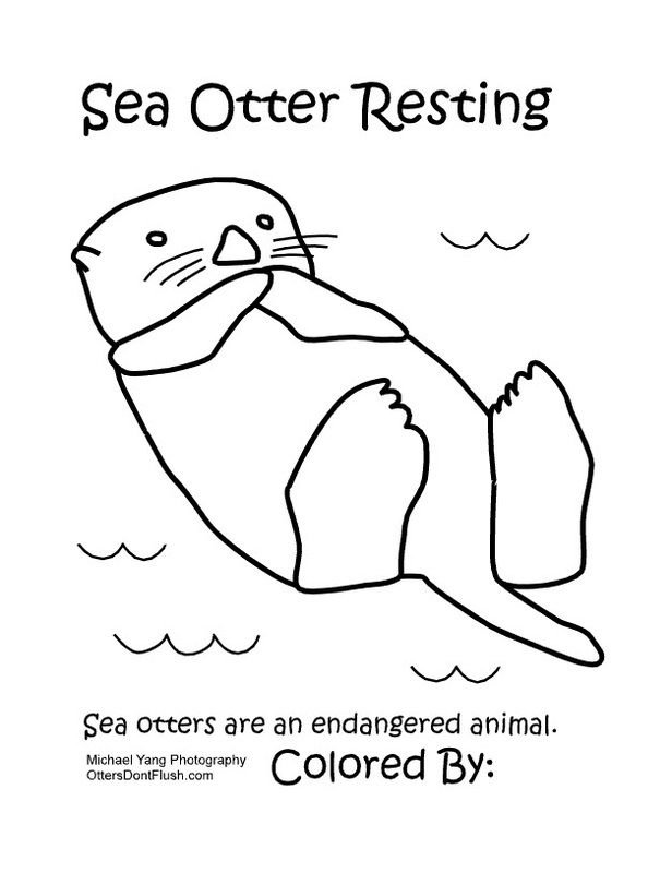 Animal Coloring Pages For Adults Sea otter with a fish Fabric
