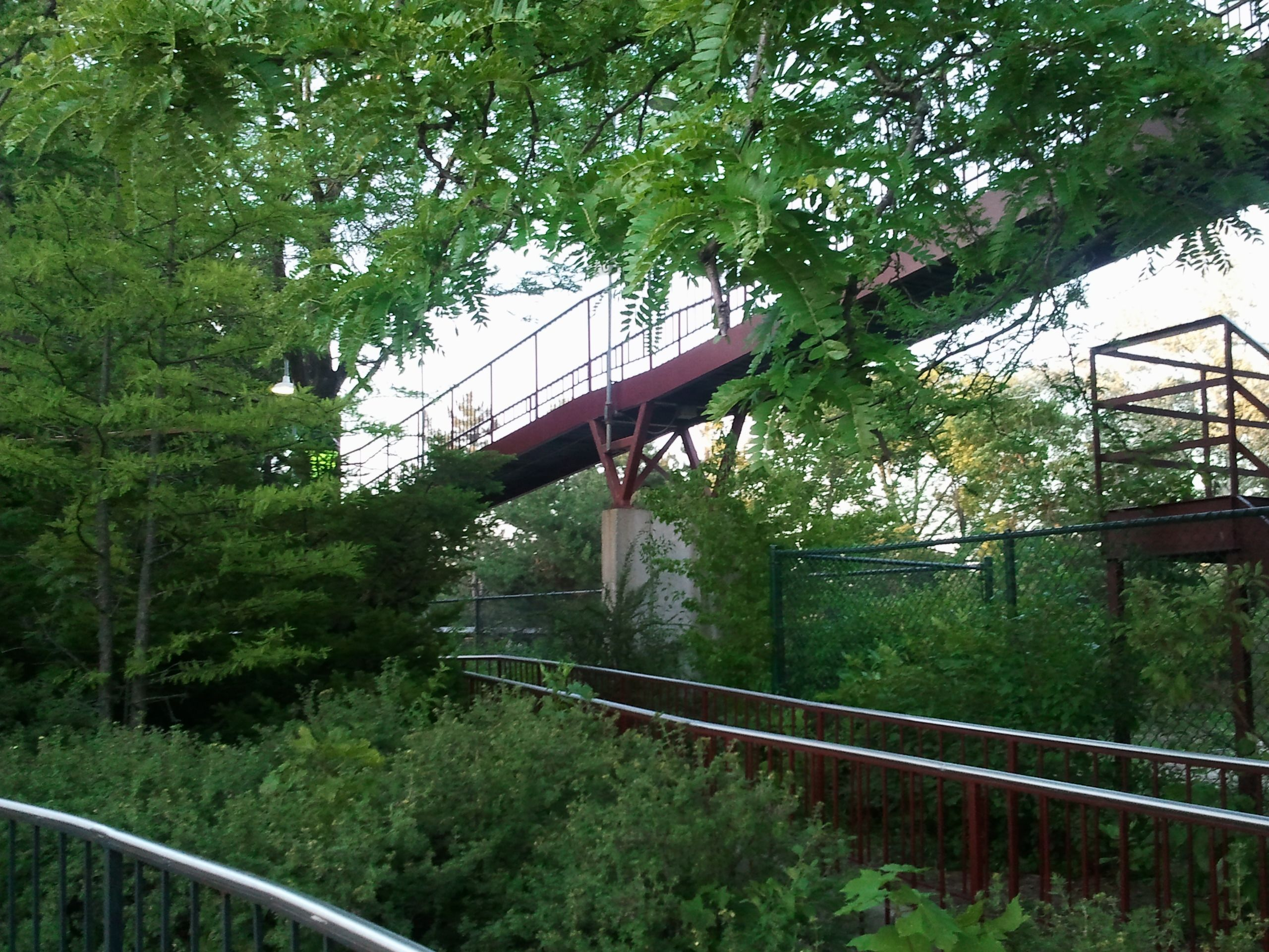 Remains Of Iron Wolf Six Flags Great America Gurnee Il Abandoned Theme Parks Great America Abandoned Places