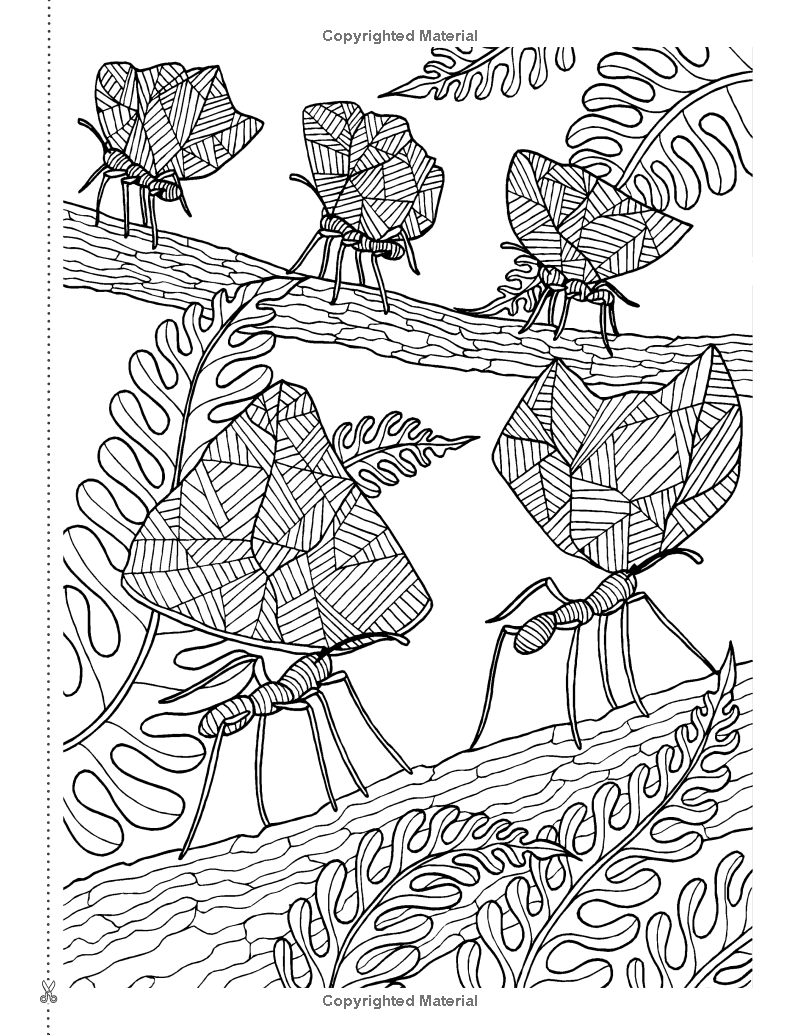 Art Therapy Colouring Book Anti Stress Coloring Page