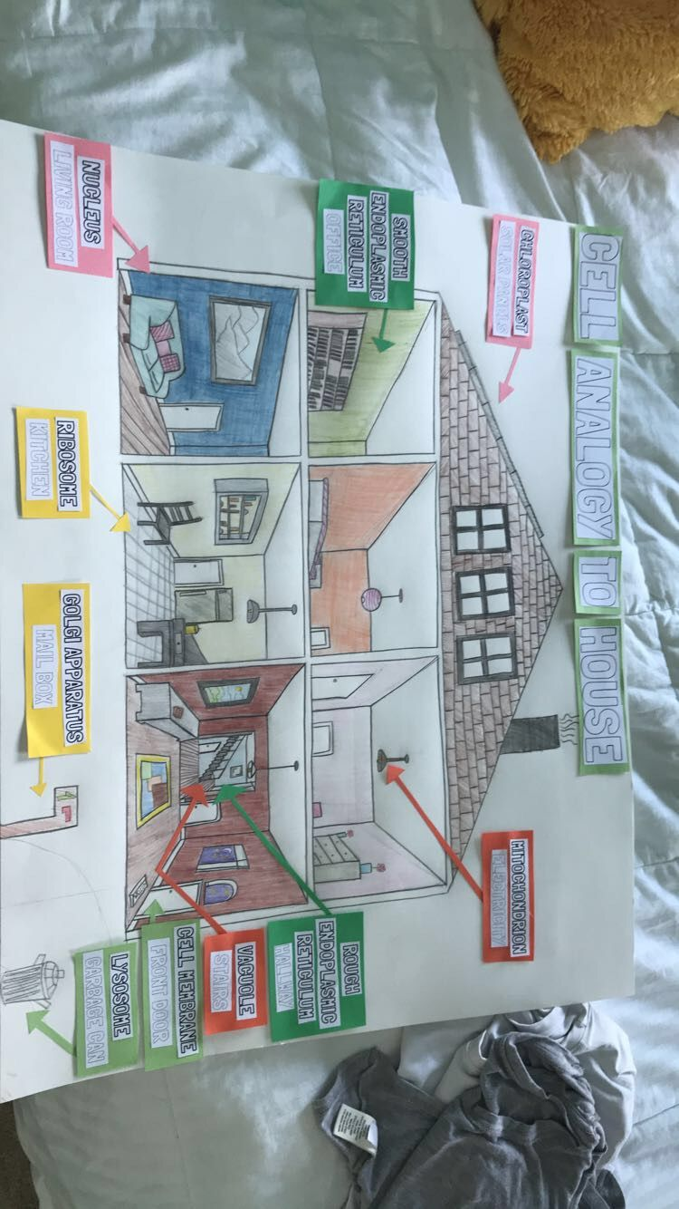 medium resolution of Cell Analogy Project to Home   Cell city