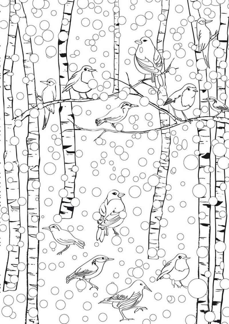 Winter Scene January Coloring Pages Coloring Pages Winter Bird Coloring Pages Adult Coloring Pages