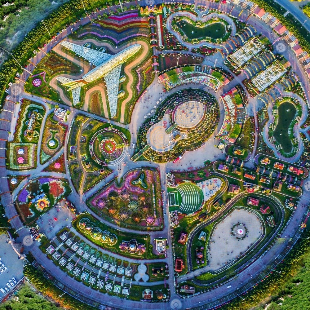 Pin by Richard Geer on Gardening in 2020 Miracle garden