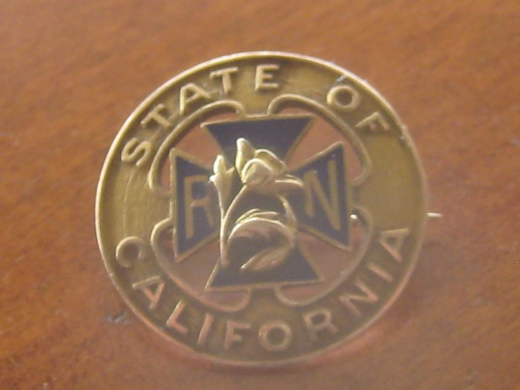 Redmond store: vintage 14K State of California Register Nurse pin.