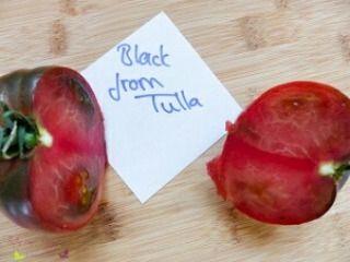 Tomatensorten: Black from Tula #tomatensorten #tomatoes #tomaten #Garten #Selbstanbau #blackfromtula