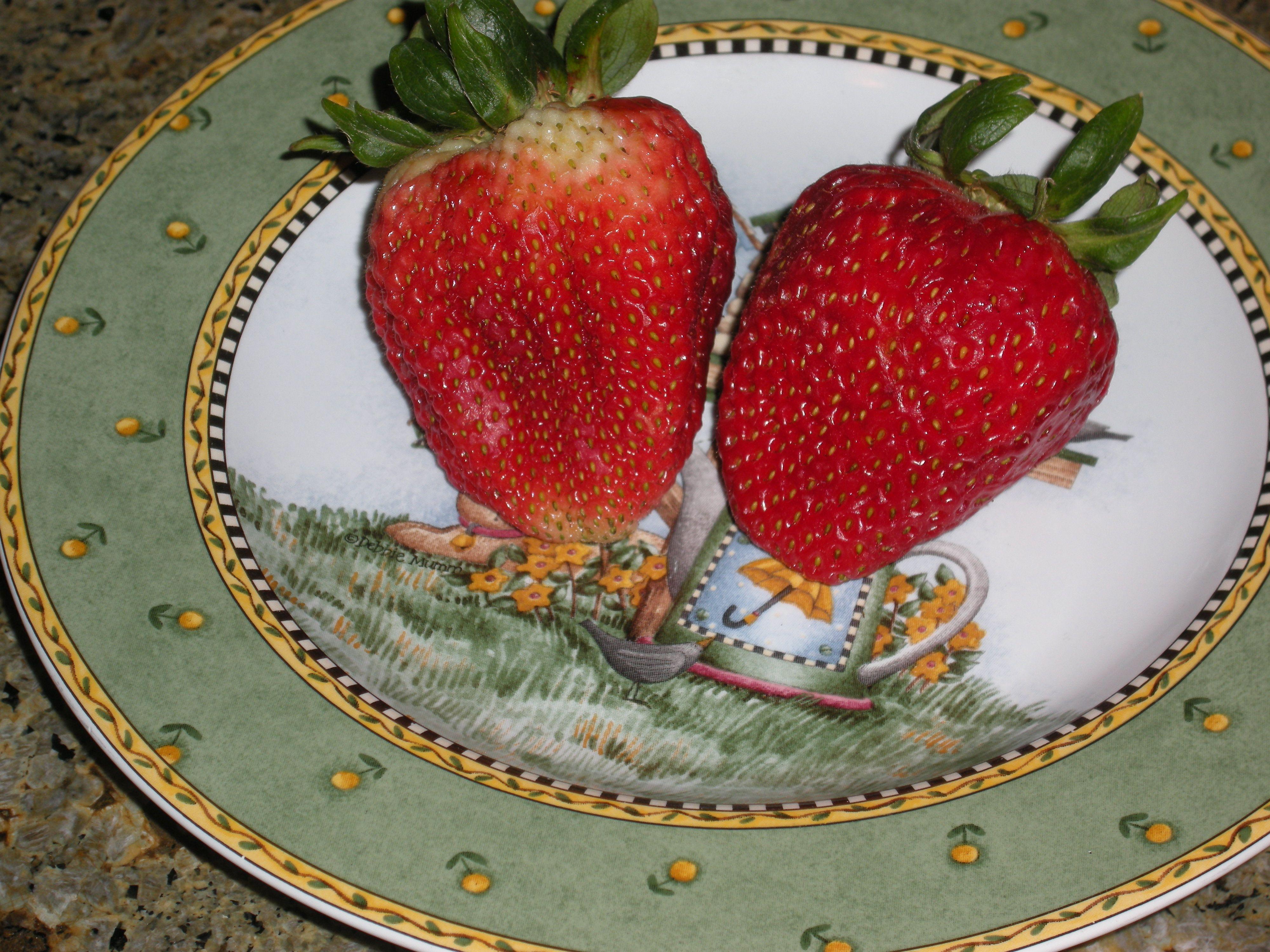 #freshfruit