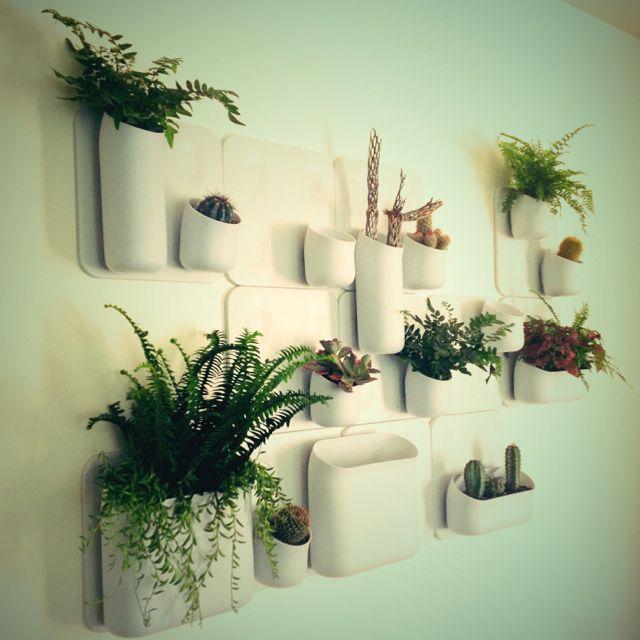 My Urbio Vertical Garden. I ❤ it!