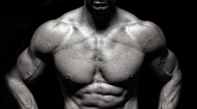 Best Shoulder Muscle Building Workout for Beginners