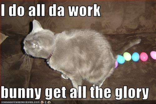 I Do All Da Work Bunny Get All The Glory Easter Cats Funny Easter Jokes Funny Easter Pictures