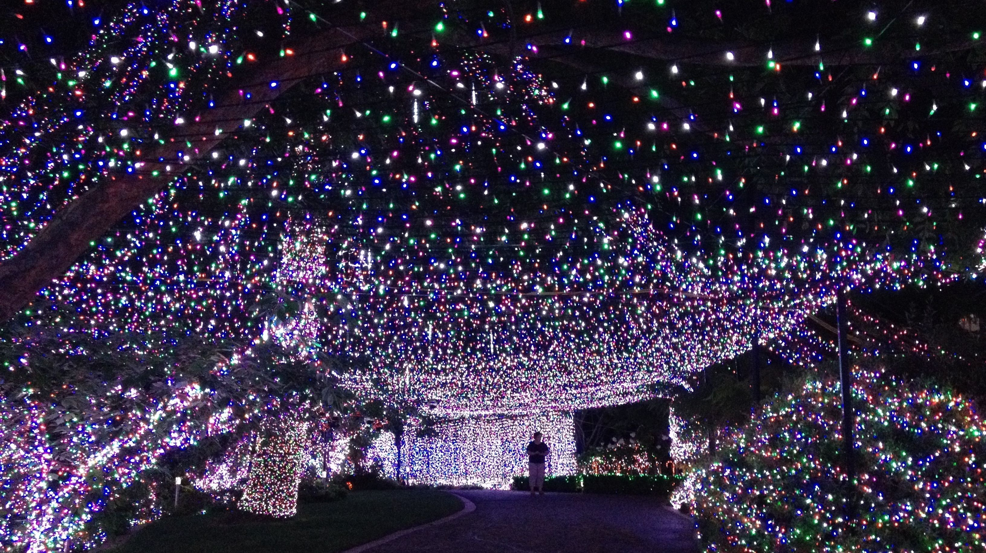 500 000 Lights Family S Christmas Display Sets World Record Christmas Light Displays Hanging Christmas Lights Christmas Lights
