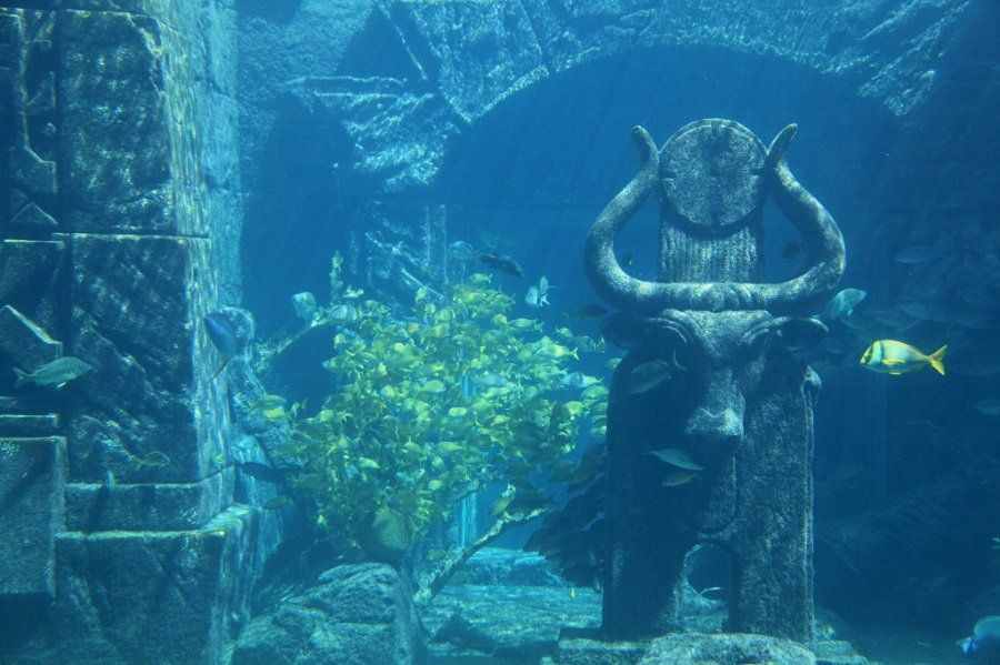 7 Cuban Underwater City Underwater City Lost City Of Atlantis Underwater