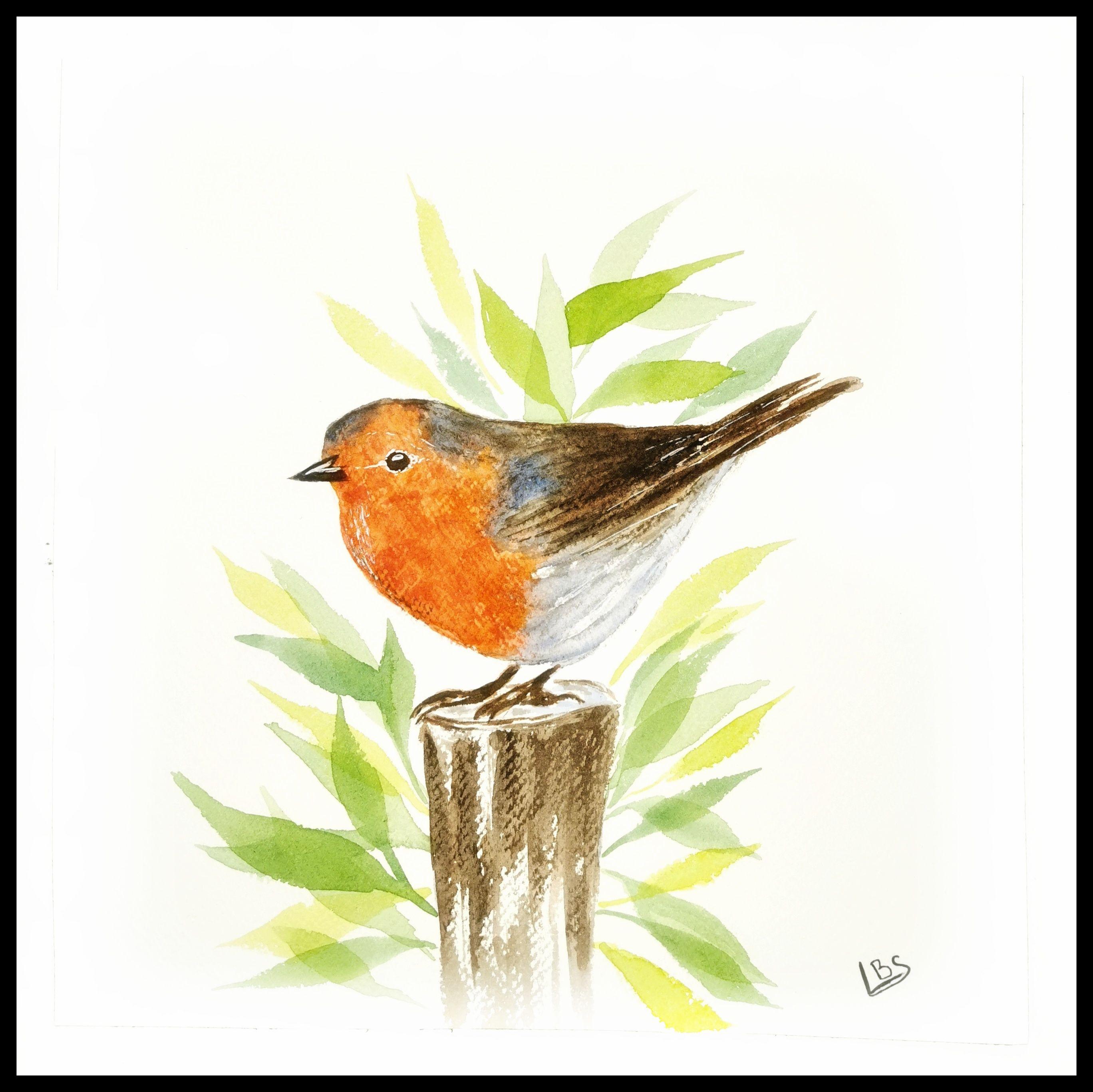 Oiseau Rouge Gorge A L Aquarelle Aquarelle Facile Art A Theme Oiseau Peinture Sur Toile Facile