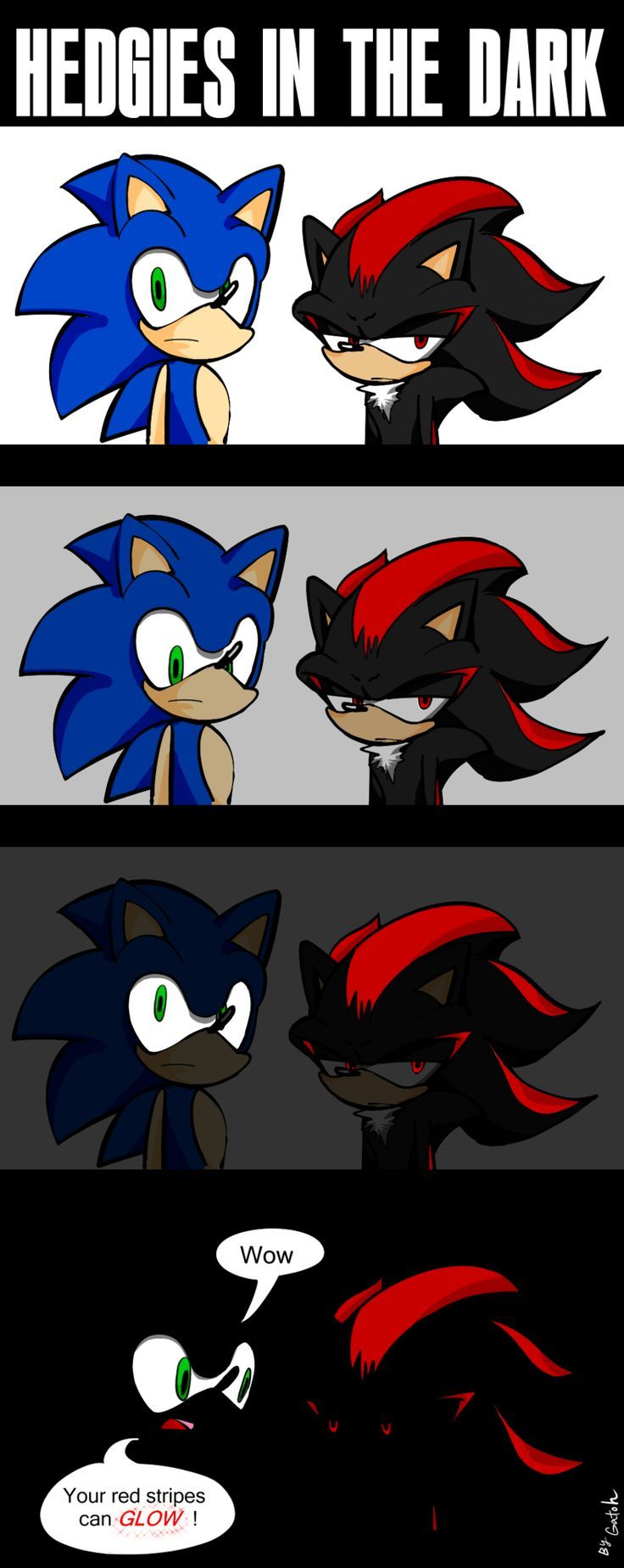 Shadow sonic shadow sonic the hedgehog sonic funny - Sonic et shadow ...