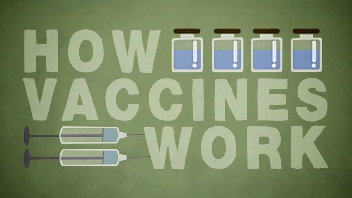 A TED-Ed Animation Explaining How Vaccines Work to Help the Body Stave Off Infections, Illness, and Disease