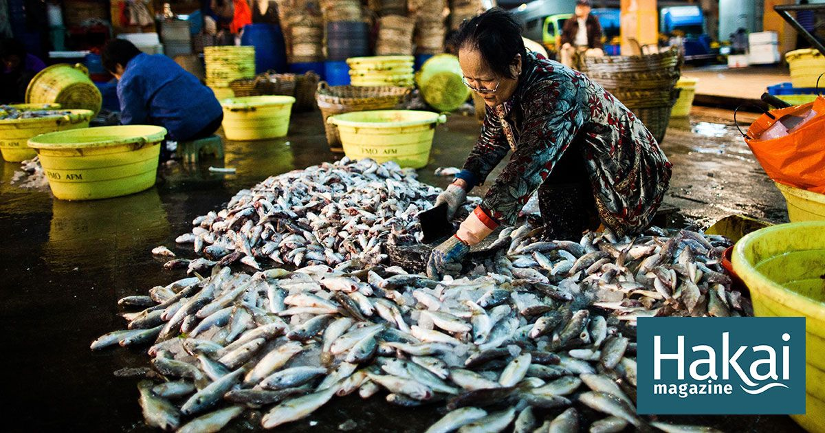 The Consequences of China's Booming Demand for Seafood