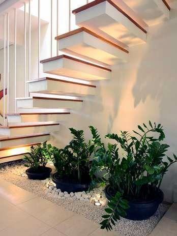 Jardines interiores bajo escaleras jardim da casa nova Pinterest