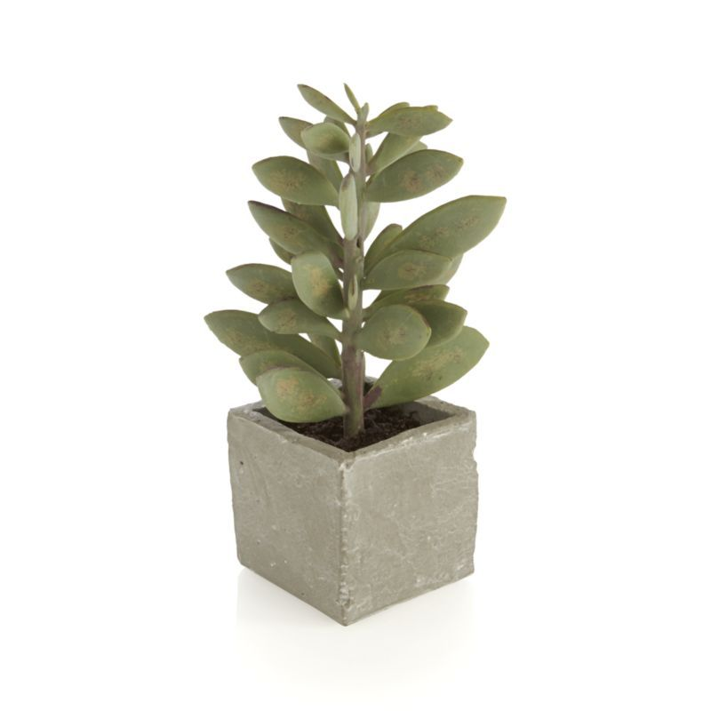 the sculptural beauty of lustrous succulent plants is realistically handcrafted for year round use each faux plant is potted in a rustically finished
