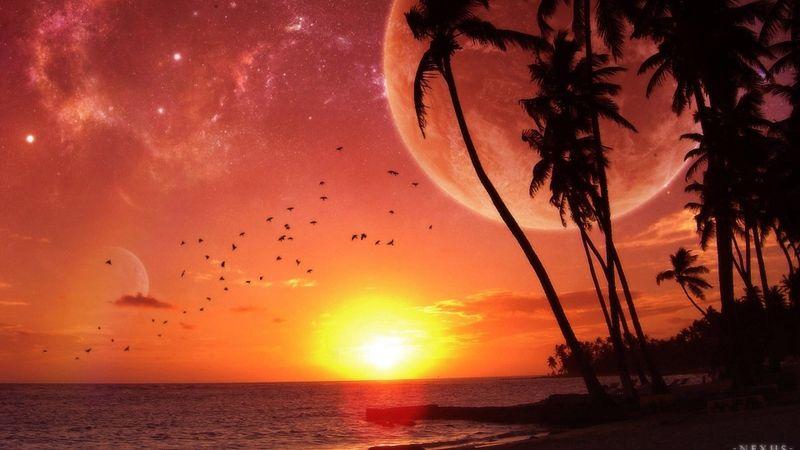 Sunset Ocean Beach Moon Palm Trees 1920x1080 Wallpaper Nature Oceans Hd Landscape Wallpaper Sunset Wallpaper Nature Wallpaper