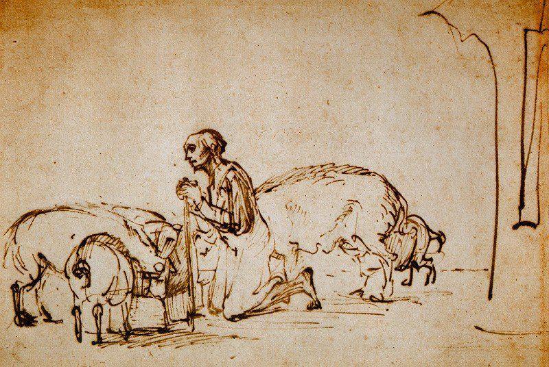 The Prodigal Son among the Pigs - Rembrandt Harmensz. van Rijn