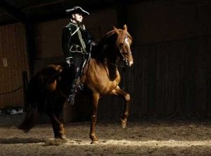 frederiksborg horse