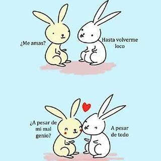 Nochedelasletras Frases Amor Animacion Pensamientos Conejos