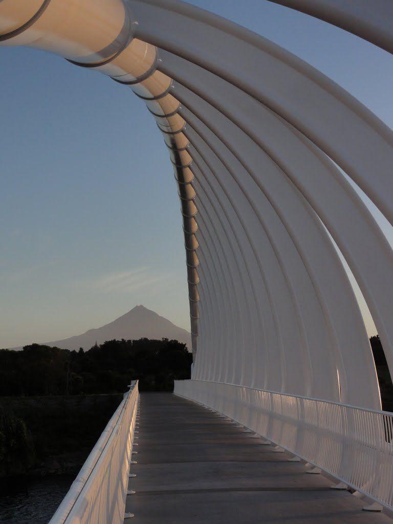 Te Rewa Rewa Bridge (3)- Iconic