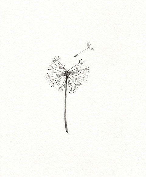 Flower Drawing App: Pin By Jolene Pombo On Apps