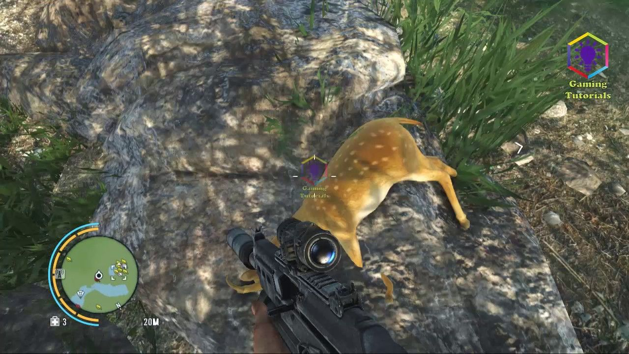 Far Cry 3 Gameplay Part 117 Path Of The Hunter Deer Hide