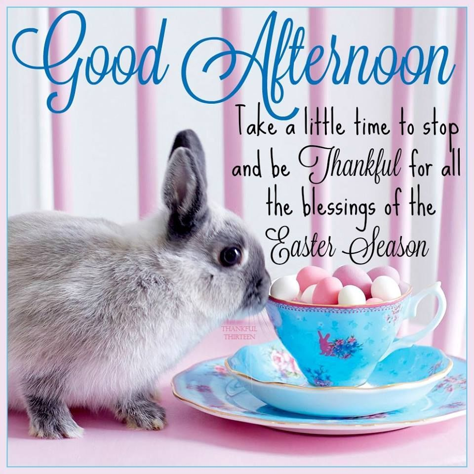 Good Afternoon Easter Quote easter easter quotes easter images easter quote happy easter happy easter. easter pictures happy easter quotes quotes for easter