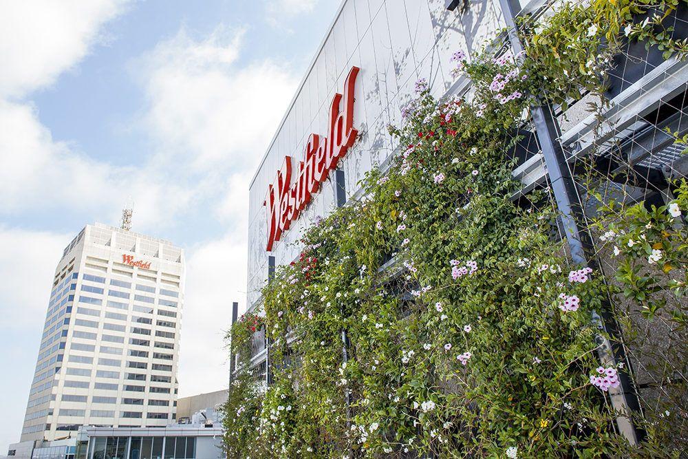 Westfield Shopping Centre Bondi Junction Green Facade
