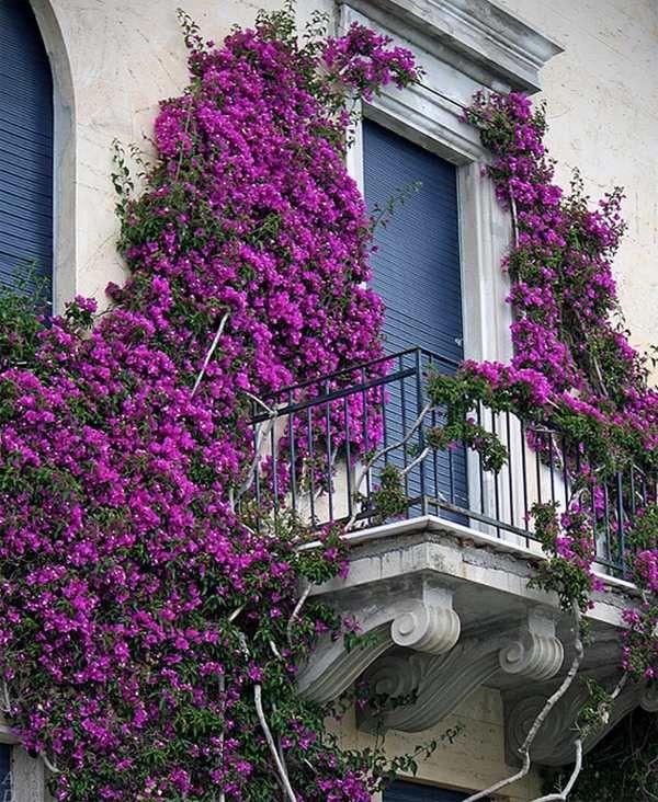 Juliet Balcony Most Romantic Balconies Small Ideas