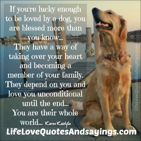 Lucky To Be Loved Dog Mommy Dogs Best Friends Pets