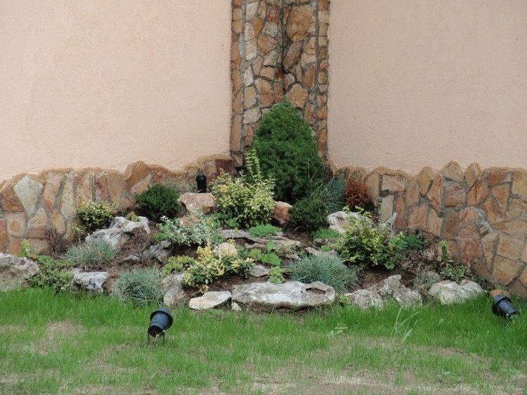 Steingarten anlegen schattige-ecke-eonymus-spindelstraich-thuja - ideen gestaltung steingarten