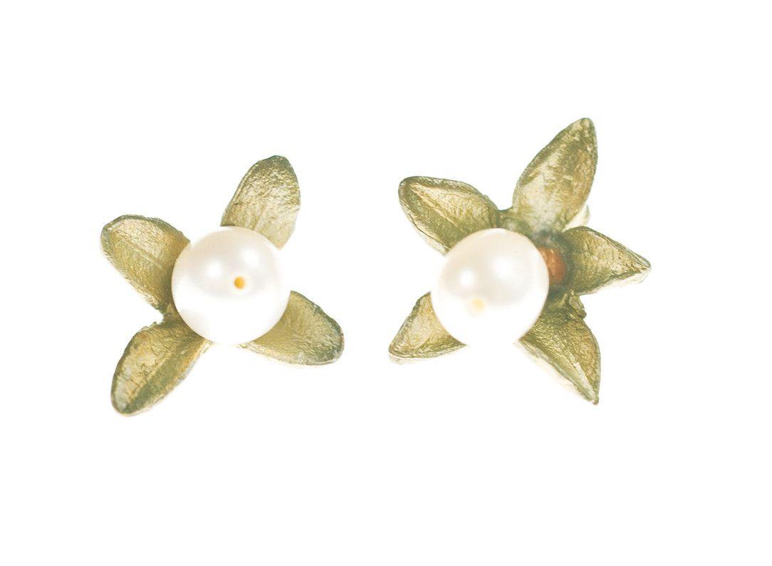 Boxwood Post Earrings