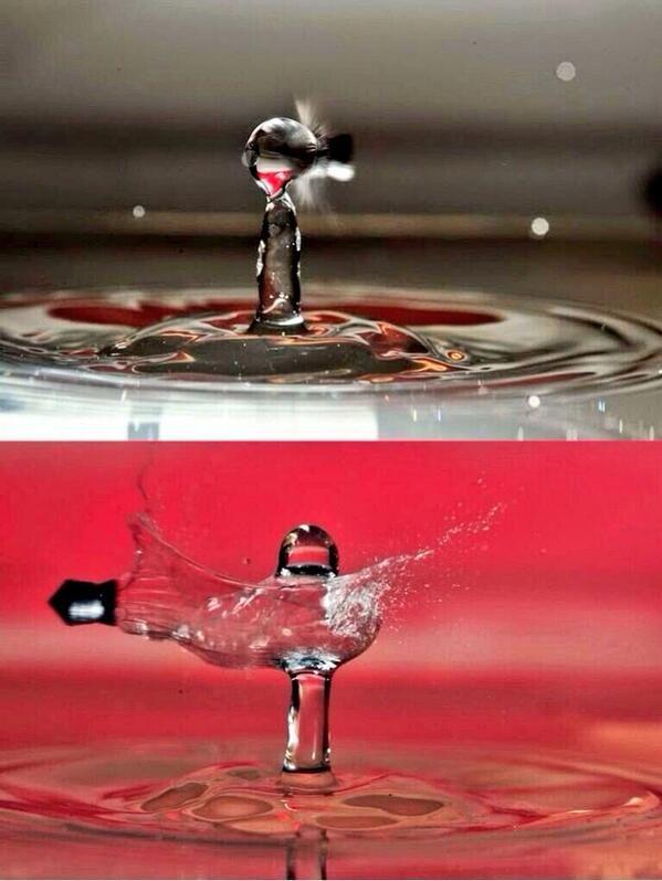 صور مذهله عالية السرعة لطلقات الرصاص تخترق قطرات الماء Oil Painting Abstract Abstract Oil Oil Painting