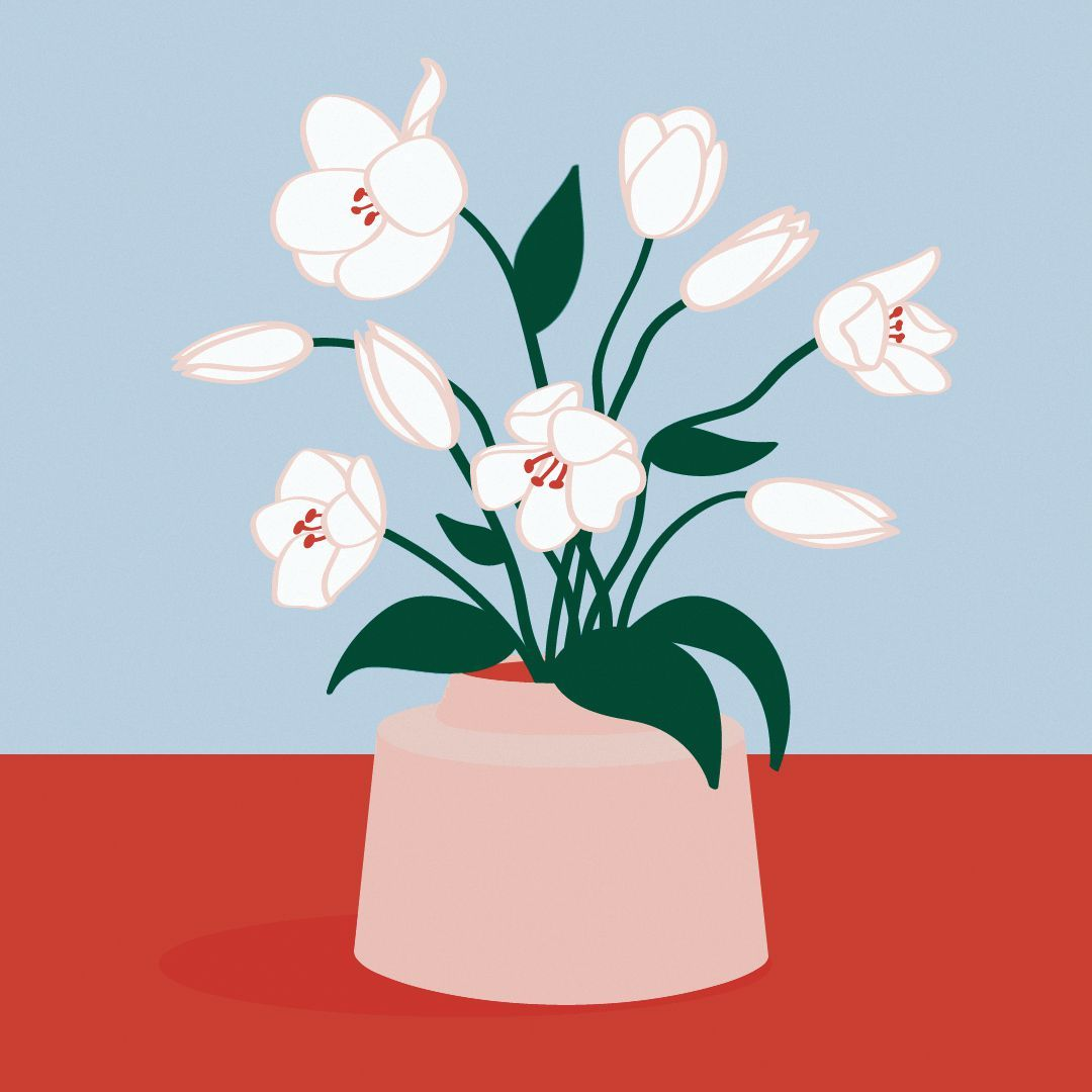 Pannenkoek Planten Ilustrasi Seni Gif Ilustrasi Digital
