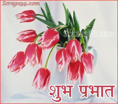 Shubh Sakal Good Morning Quotes Marathi Images In 2020 Hd Flowers Flower Wallpaper Tulips