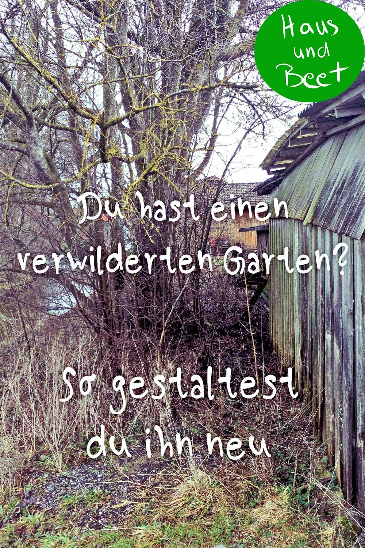 Verwildeter Garten So Fangst Du An Haus Und Beet Gartenerde Garten Anlegen Traumgarten