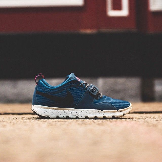 Nike SB Trainerendor: Blue