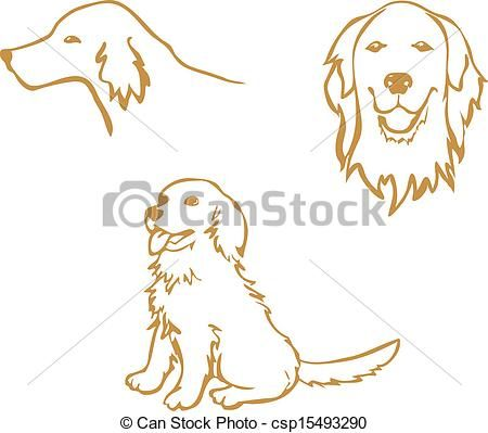 Golden Retriever Vector Stock Illustration Royalty Free