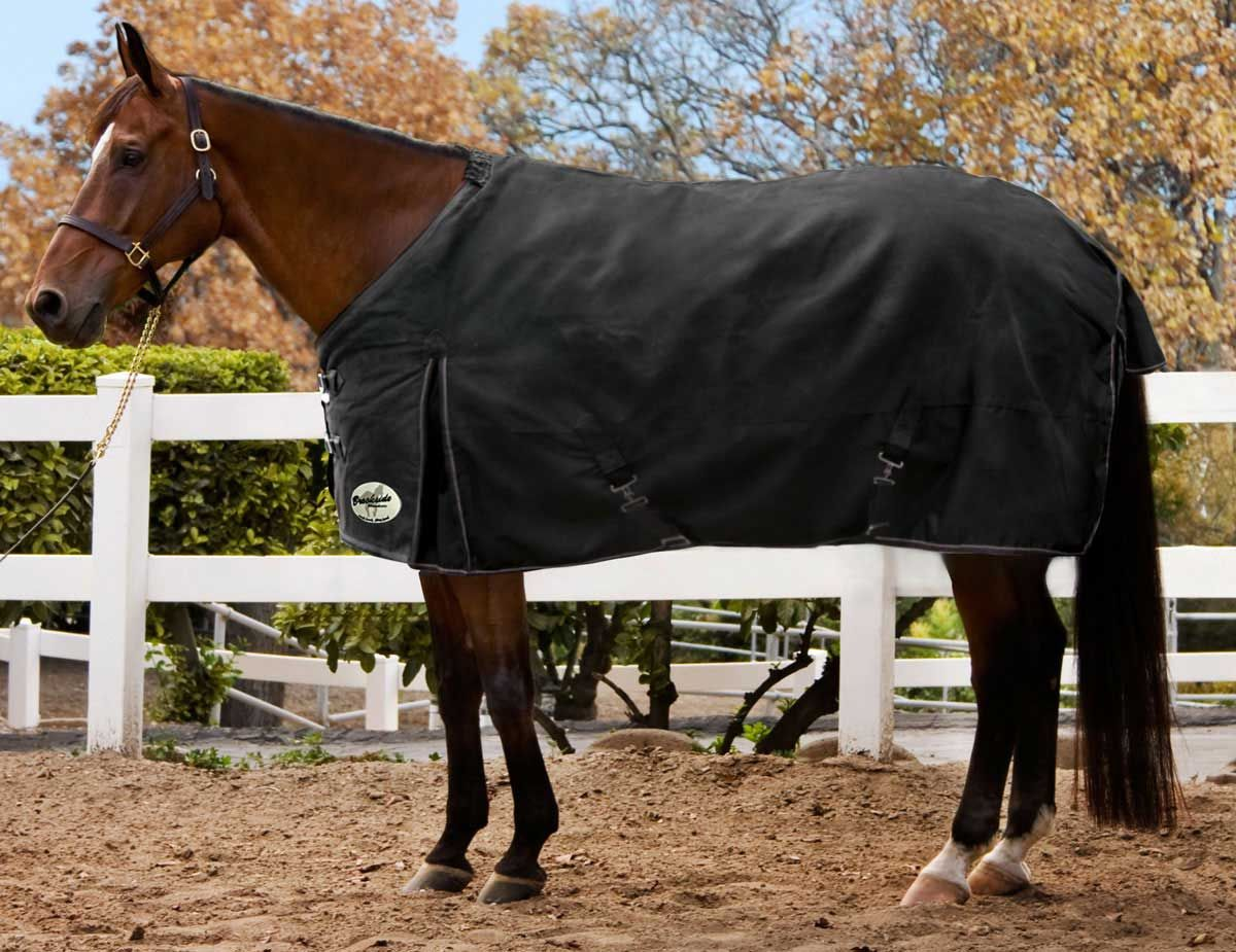 Kens I Tech T Turnout Horse Blanket In