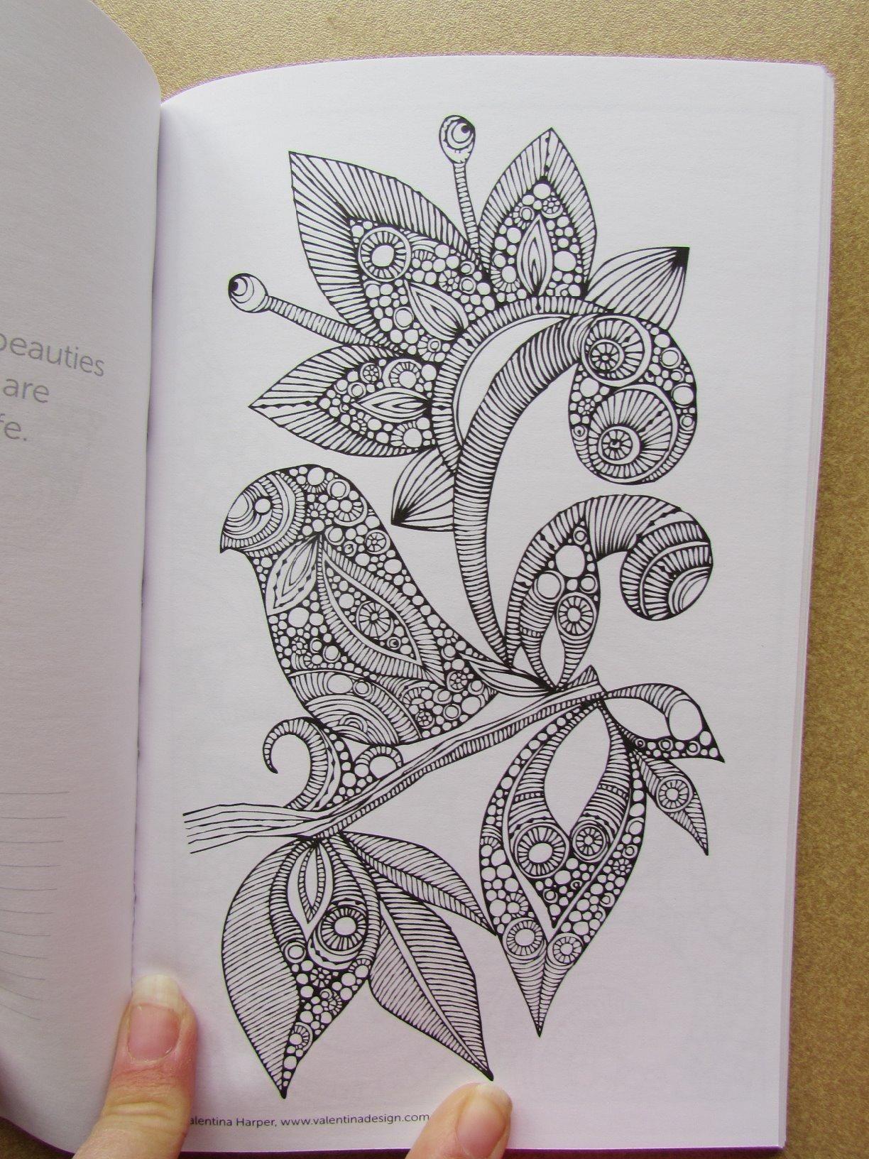 Amazon Com Color Calm Coloring Book On The Go 9781497200333 Valentina Harper Books Coloring Books Book Design Pen Art