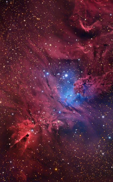 thedemon-hauntedworld: Cone Nebula LRGB Ha Credit: Tony Hallas...