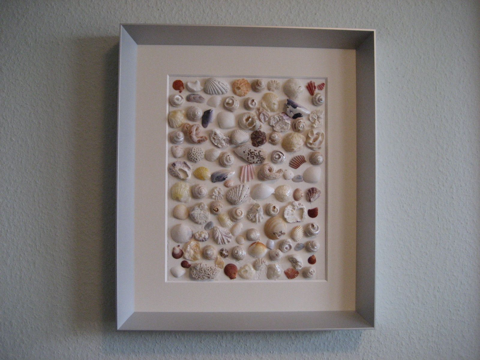 What to do with all those shells craft ideas for Shell craft ideas