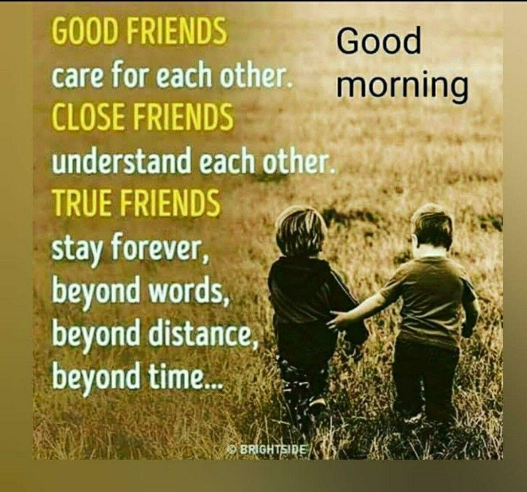 Pin By Vinay Pavani On Good Morning Good Morning Quotes Morning Quotes Friendship Quotes