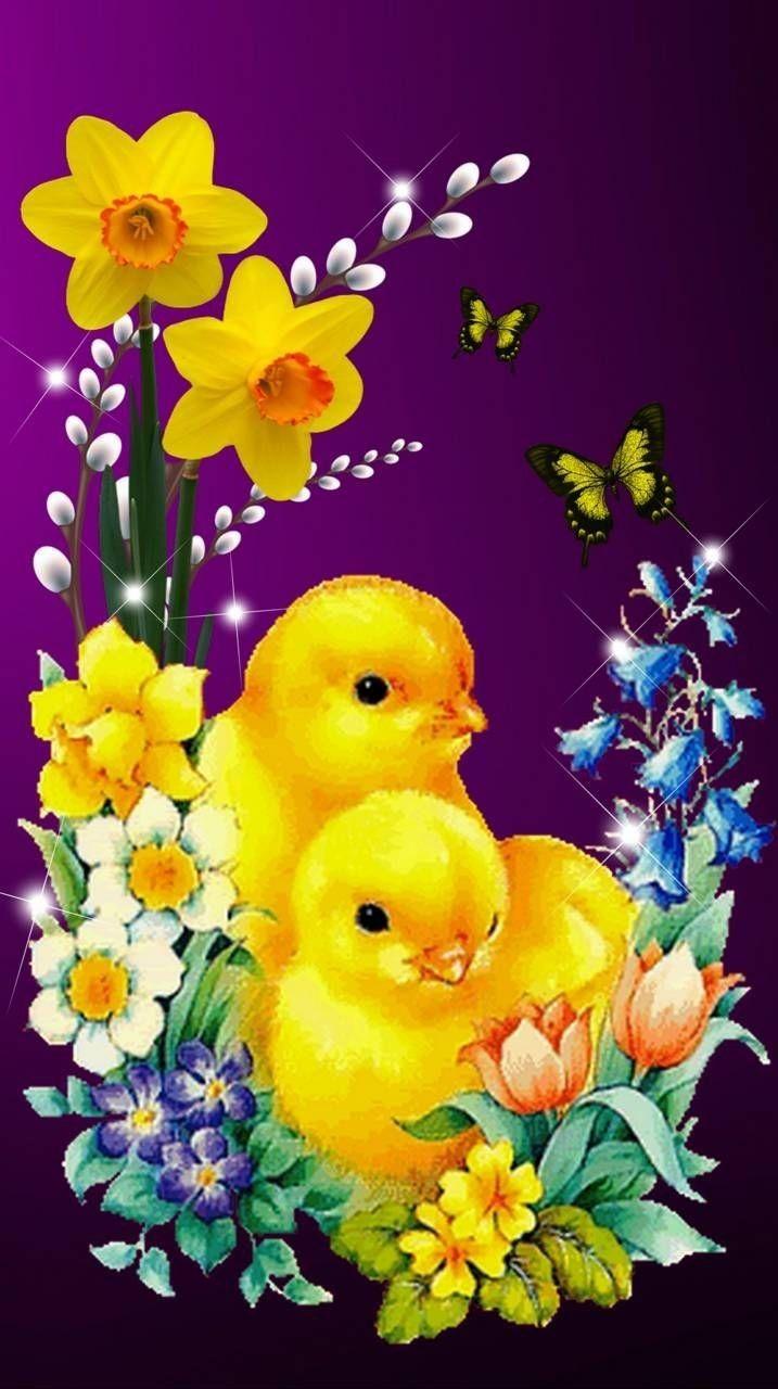 Ein frohes Osterfest wünsche ich euch 💖🍸