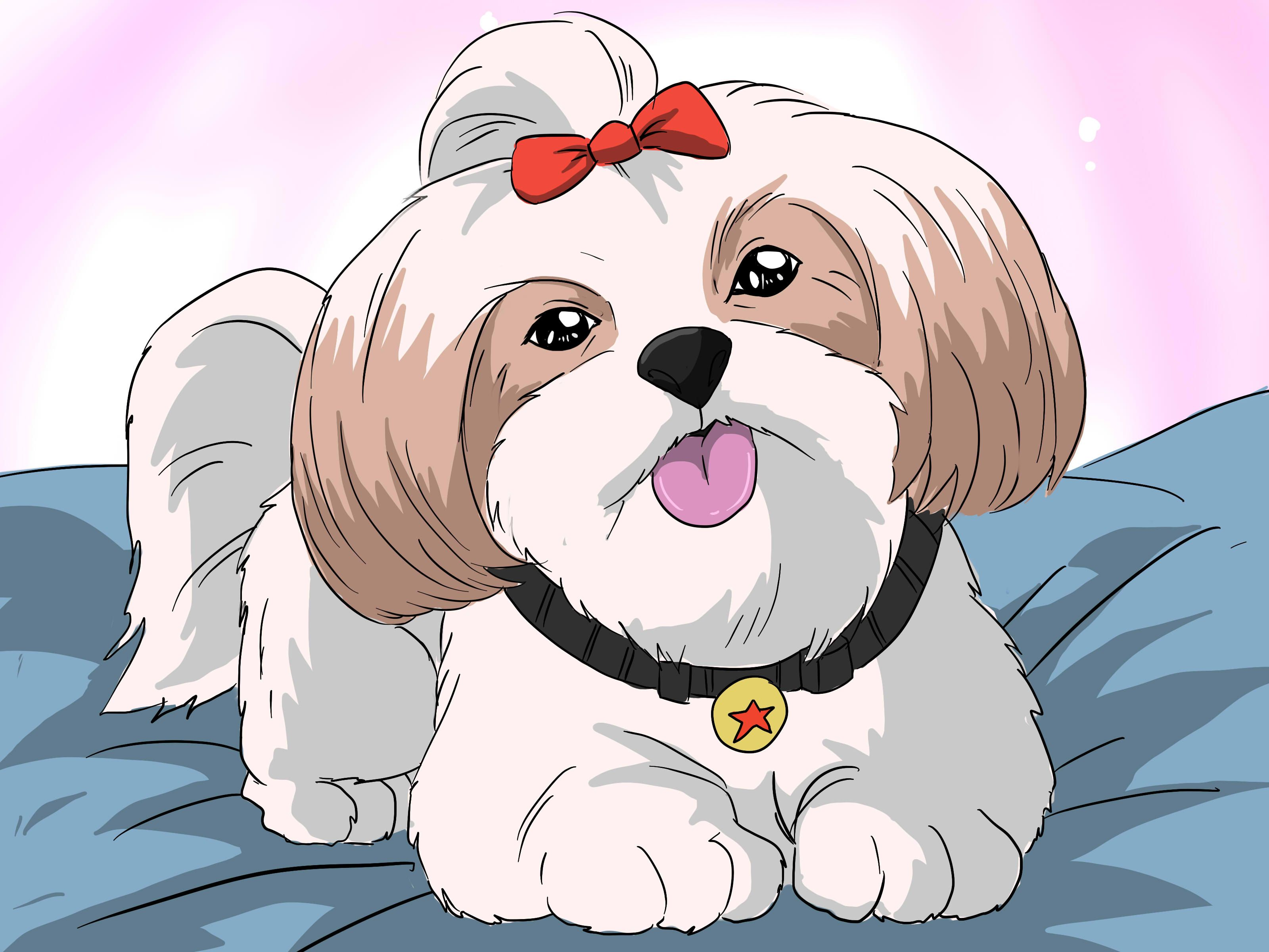 How To Bathe A Shih Tzu Puppy 15 Steps With Pictures Wikihow