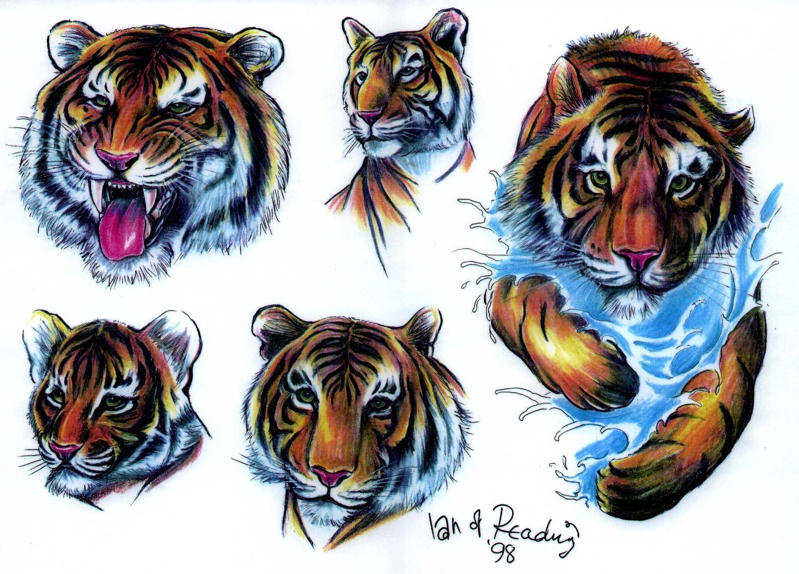 Tiger Wallpaper Free Tiger Category Tiger Wallpaper Tiger Tattoo Tattoo Flash Art Tiger tattoo wallpaper free download